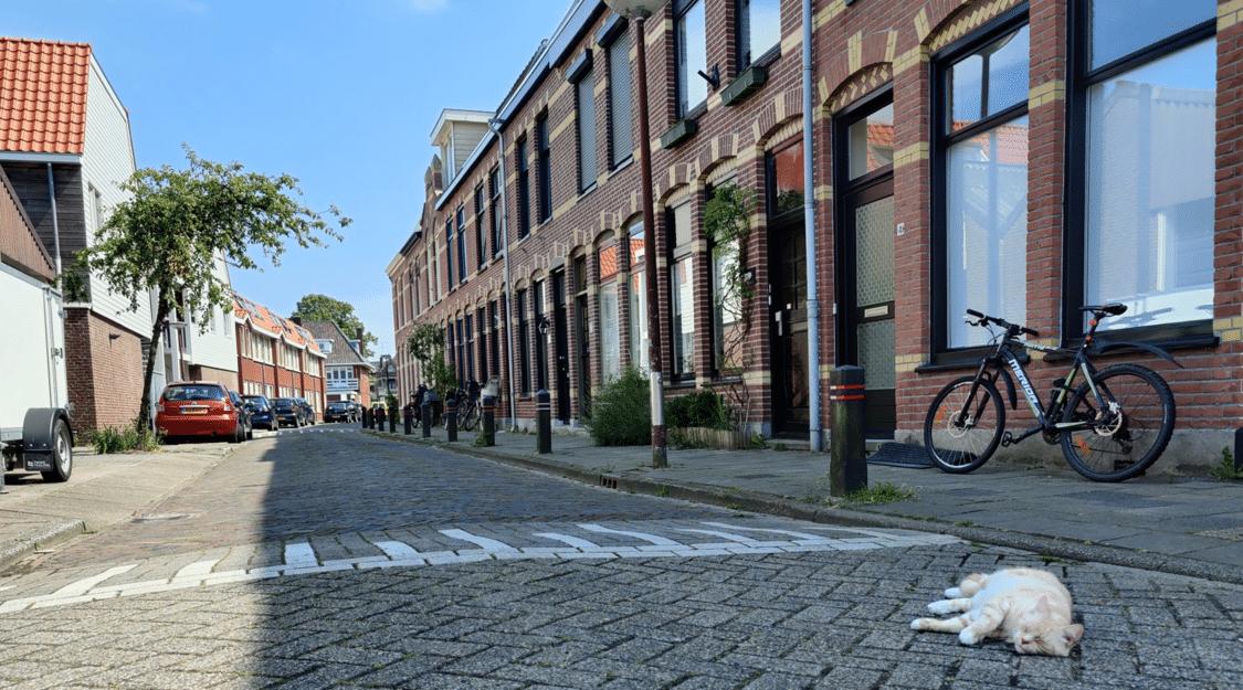 Alkmaar Van der Woudestraat, Bloemwijk district